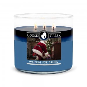 Goose Creek Tumbler średni WAITING FOR SANTA