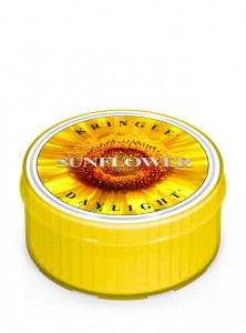 Kringle Candle Daylight SUNFLOWER