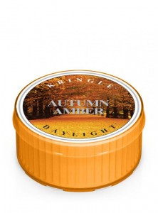 Daylight AUTUMN AMBER Kringle Candle