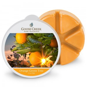 Goose Creek Wosk zapachowy ORANGE GROVE TREE