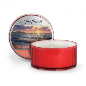 Goose Creek Candle Fireflies SUNSET SPARKLE