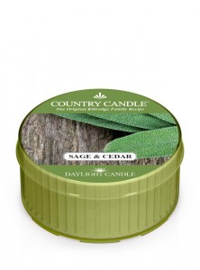 Daylight SAGE & CEDAR Country Candle
