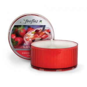 Fireflies  SUMMER SLICES Goose Creek Candle