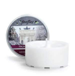 Fireflies ITALIAN WINTER Goose Creek Candle