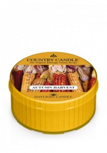 Daylight AUTUMN HARVEST Country Candle