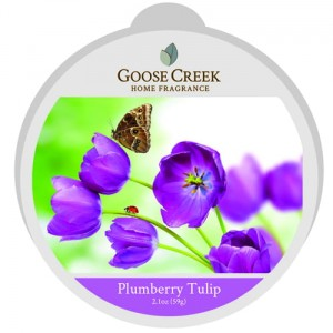 Wosk zapachowy PLUMBERRY TULIP Goose Creek Candle